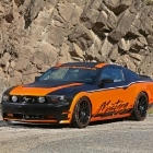 Design World Mustang 5.0