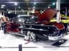 nice-impala