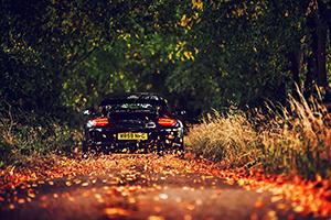 Thanksgiving Porsche