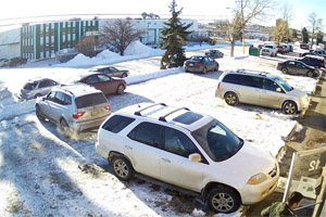 Worst driver Calgary