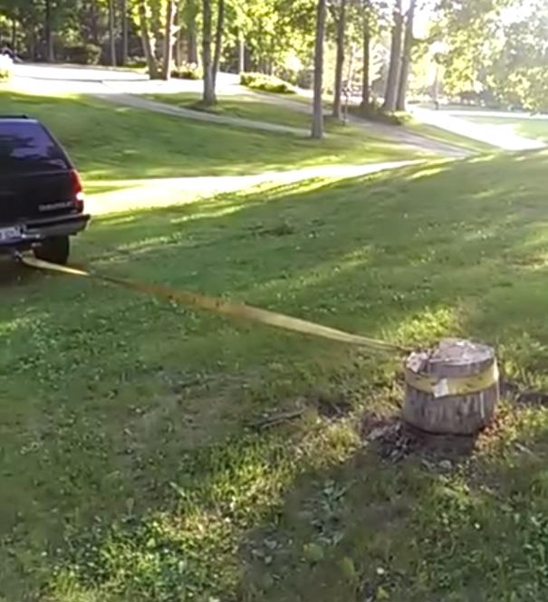 Friday FAIL Stump Removal