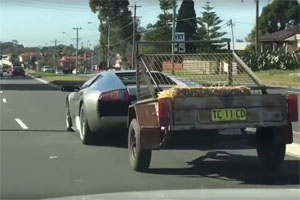Lamborghini Murciélago towing goats